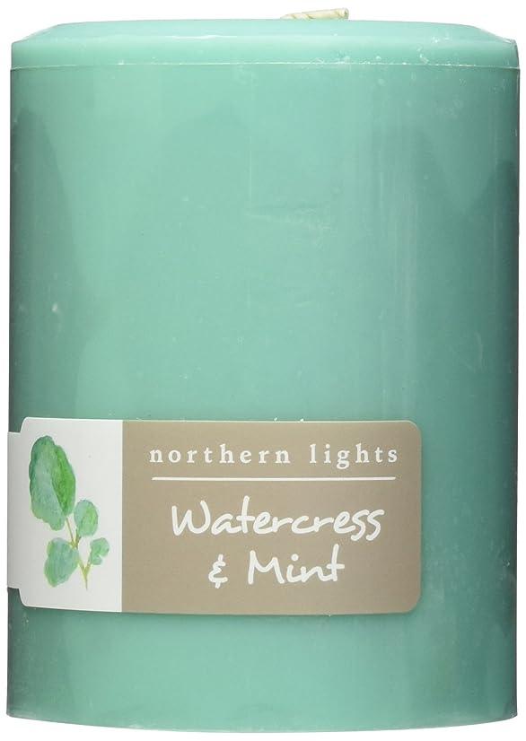 カバー思慮のない群がるNorthern Lights Candles Watercress &ミントFragranceパレットPillar Candle、3?x 4?