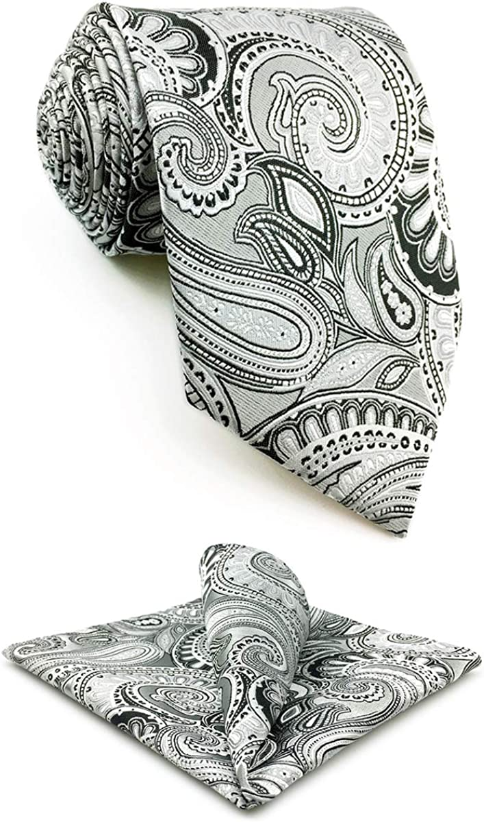 S&W SHLAX&WING Mens Ties Set Colours Necktie Grey Paisley