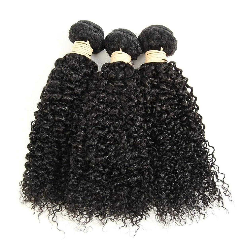 どこさびた他のバンドでかつら ブラジルのバージン変態巻き毛の束8-28インチ人毛エクステンションナチュラルカラー1バンドル、100g /個女性の合成かつらレースかつらロールプレイングかつら (色 : 黒, サイズ : 14 inch)