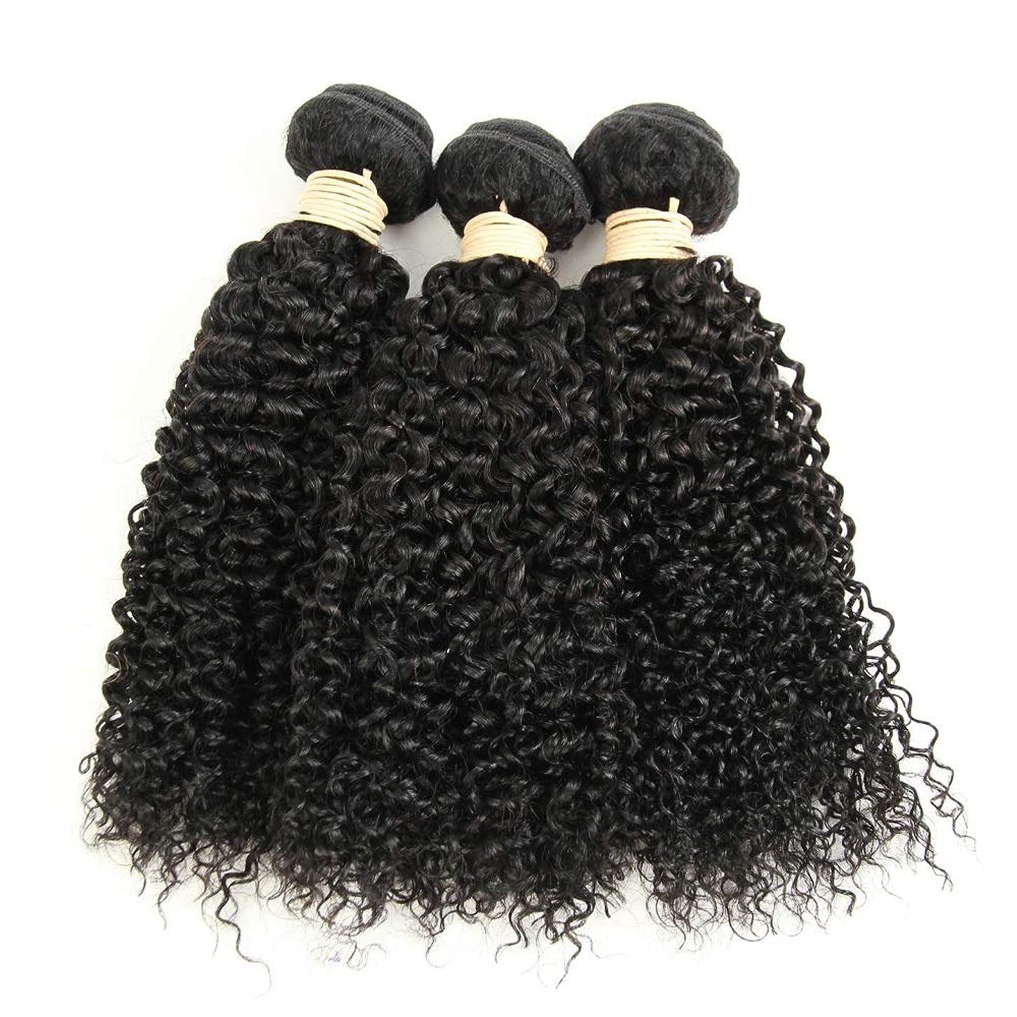 かつら ブラジルのバージン変態巻き毛の束8-28インチ人毛エクステンションナチュラルカラー1バンドル、100g /個女性の合成かつらレースかつらロールプレイングかつら (色 : 黒, サイズ : 14 inch)
