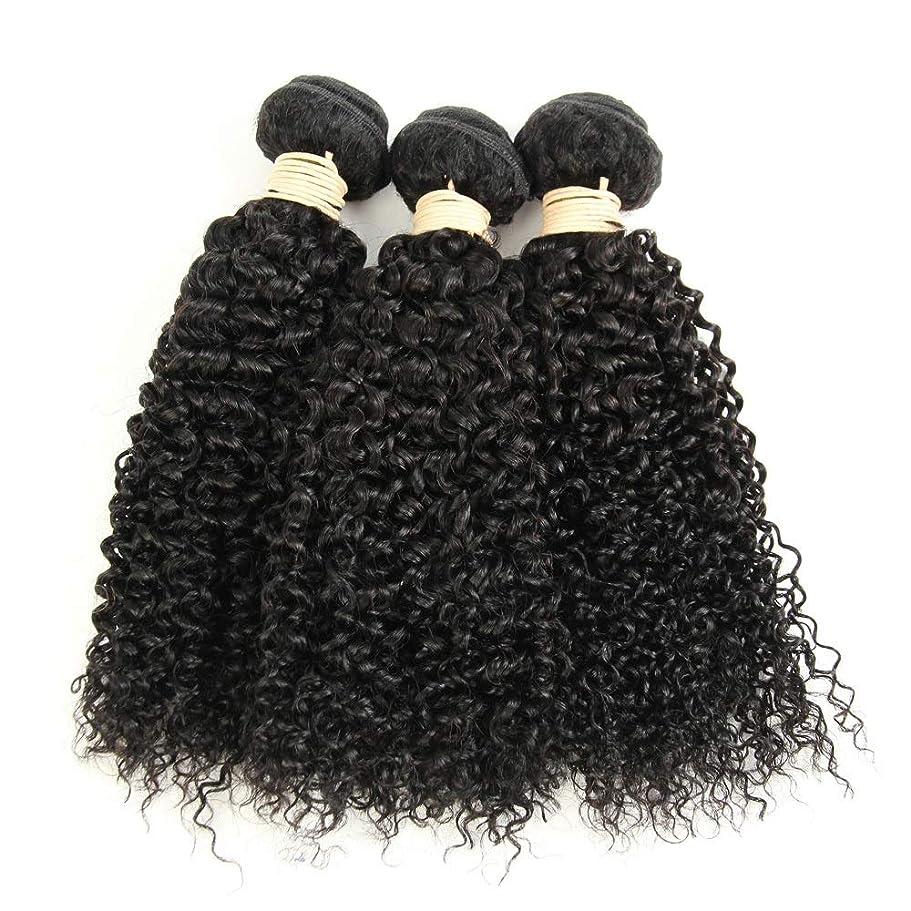 垂直ミル識字かつら ブラジルのバージン変態巻き毛の束8-28インチ人毛エクステンションナチュラルカラー1バンドル、100g /個女性の合成かつらレースかつらロールプレイングかつら (色 : 黒, サイズ : 14 inch)