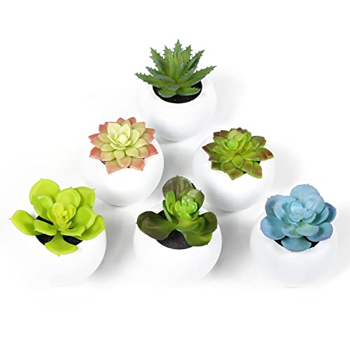 Swell Artificial Plant For Coffee Table Amazon Com Download Free Architecture Designs Grimeyleaguecom
