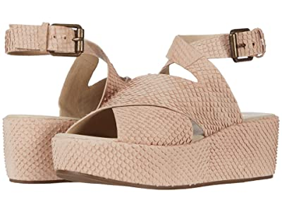 Matisse Matisse x Amuse Society Runaway (Blush Snake Leather) Women