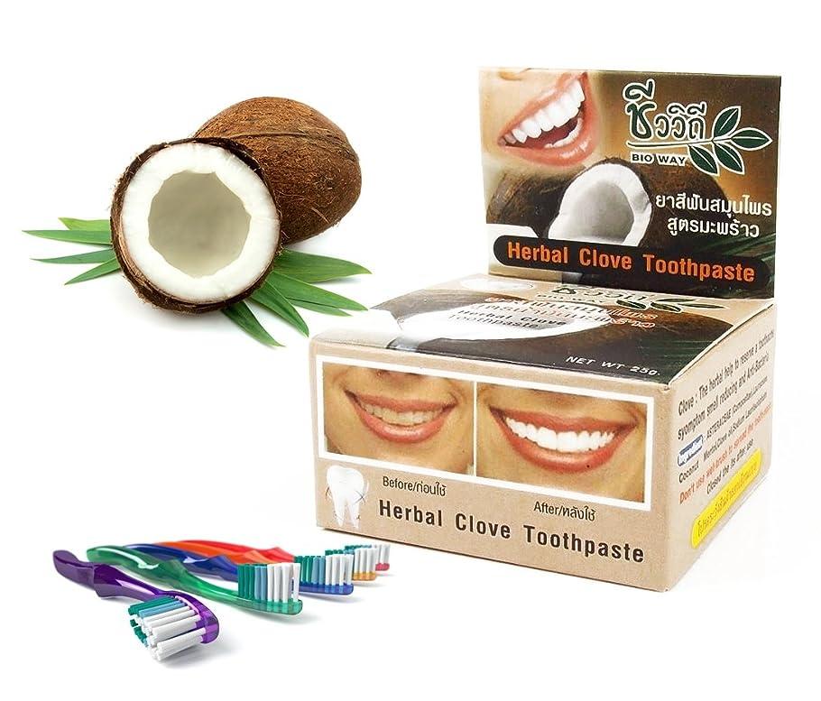 ボウルオプション痴漢Mangos Teen. Toothpaste Coconut Natural Herbal Clove Teeth Whitening Help Eliminate Limestone Cigarette Coffee Reduced to have a Hypresensitive Tooth Anti Bacteria You have Fresh Breath for Along Time.