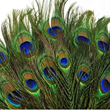 """SHUO 10-12""""(25-30cm) 50pcs Natural Peacock Feather Eyes Screen Green DIY Craft Holiday Wedding Decorations"""