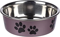 Best Dog Bowls for Cockapoo