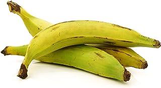 Fresh Whole Plantains (5lb) Tropical Importers