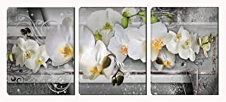 Butterfly Orchid Prints Wall Art - Flower Paintings for Bedroom - Framed Posters Art Wall Decor for Living Room (Gray and Green)