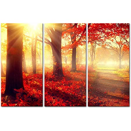 Amazon Com Red Tree Wall Art Decor The Sun Shines Into The Forest And Maple Leaves Canvas Pictures Artwork Autumn Fall Landscape 3 Panel Painting Prints For Home Living Dining Room Posters