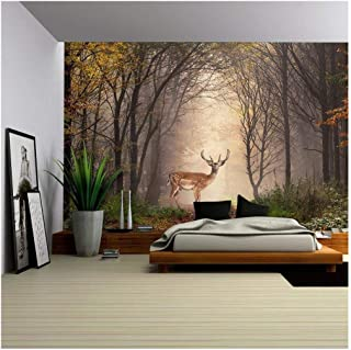 wall26 - Fallow Deer Standing in a Dreamy Misty Forest, with Beautiful Moody Light in The Middle and Framed by Darker Trees - Removable Wall Mural | Self-Adhesive Large Wallpaper - 66x96 inches