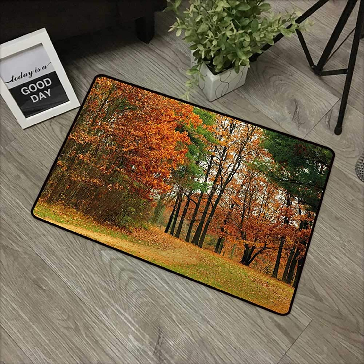 Learning pad W35 x L59 INCH Fall,Cloudy Overcast Day in September Shrubs Pines Sidewalk in The Park Forest,orange Green Brown Easy to Clean, no Deformation, no Fading Non-Slip Door Mat Carpet