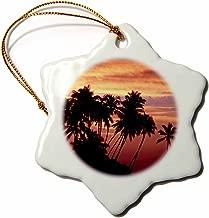 3dRose ORN_89501_1 Hawaii, Big Island. Sunset Over Palm Grove-Us12 Bja0008-Jaynes Gallery-Snowflake Ornament, 3-Inch, Porcelain