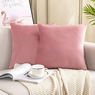 YESHOME Pack of 2 Throw Pillow Covers Pink Decorative with Soft Velvet Solid Cushion Cover Bedroom Office Car 20x20