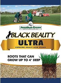 Jonathan Green 10320 Black Beauty Ultra Grass Seed, 1 lb