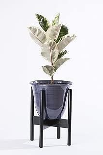 planter stand mid century