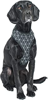 MOG & BONE Neoprene Dog Harness Pitch Triangle Print Small