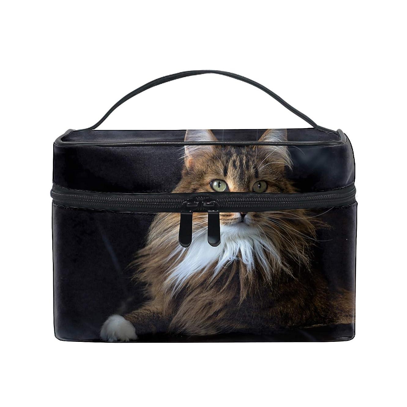 酒無線預言者便携式メインクーンふわふわ猫ブラウンクーン メイクボックス 收納抜群 大容量 可愛い 化粧バッグ 旅行
