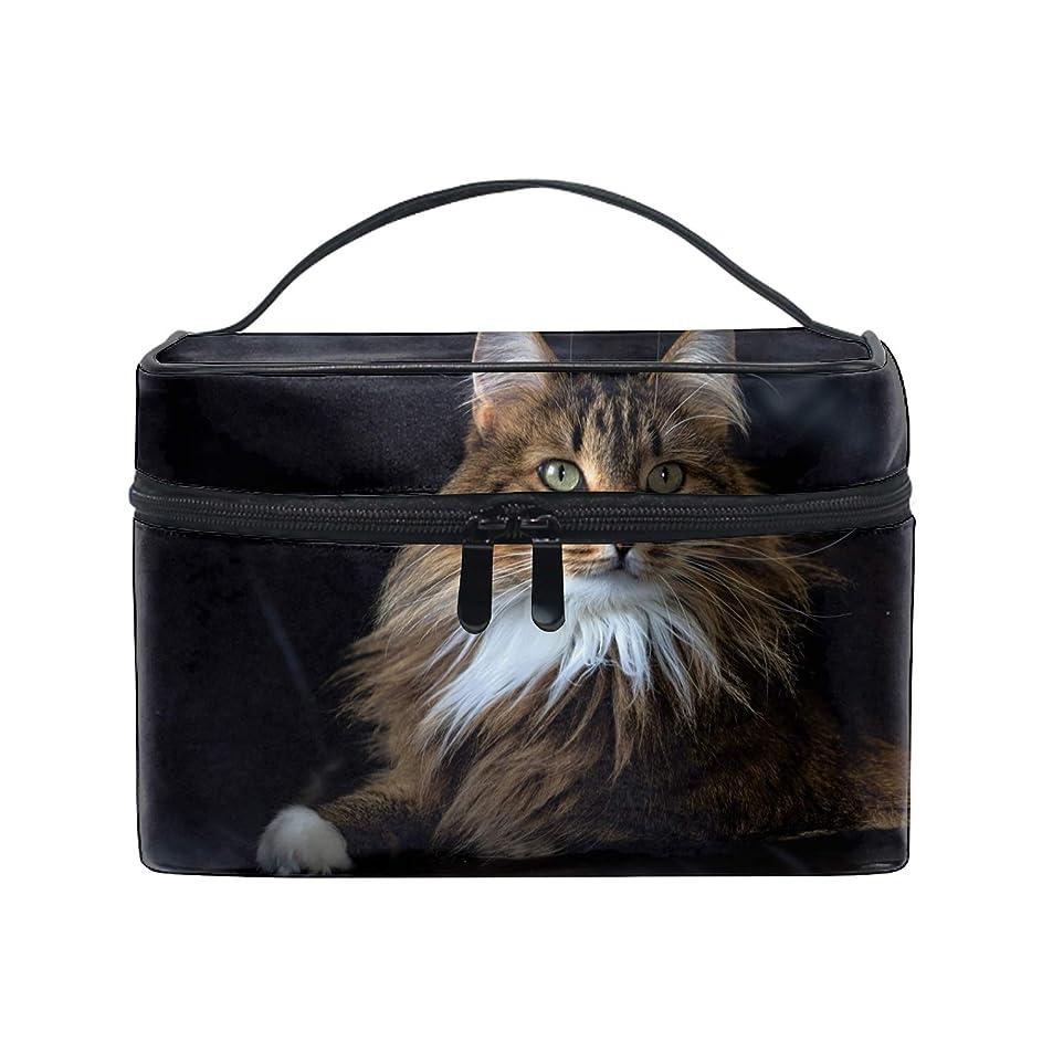 謙虚見分ける同行便携式メインクーンふわふわ猫ブラウンクーン メイクボックス 收納抜群 大容量 可愛い 化粧バッグ 旅行