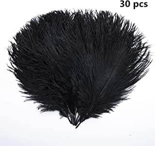 Hollosport 30 PCS 10-12inch Ostrich Feathers,Craft Art Soft Native Feather Accessories for Festival,DIY,Party,Wedding,Dream Catcher,Home Decoration (Black)