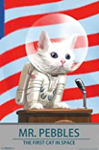 Trends International Fallout 4-Mr. Pebbles-The First Cat in Space Mount Wall Poster, 22.375