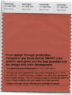 Pantone Smart Swatch 17-1345 Spice Route