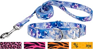 Country Brook Design - Martingale Collar & Leash - Animal Collection