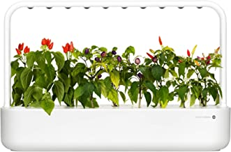 Amazon.es: Click And Grow
