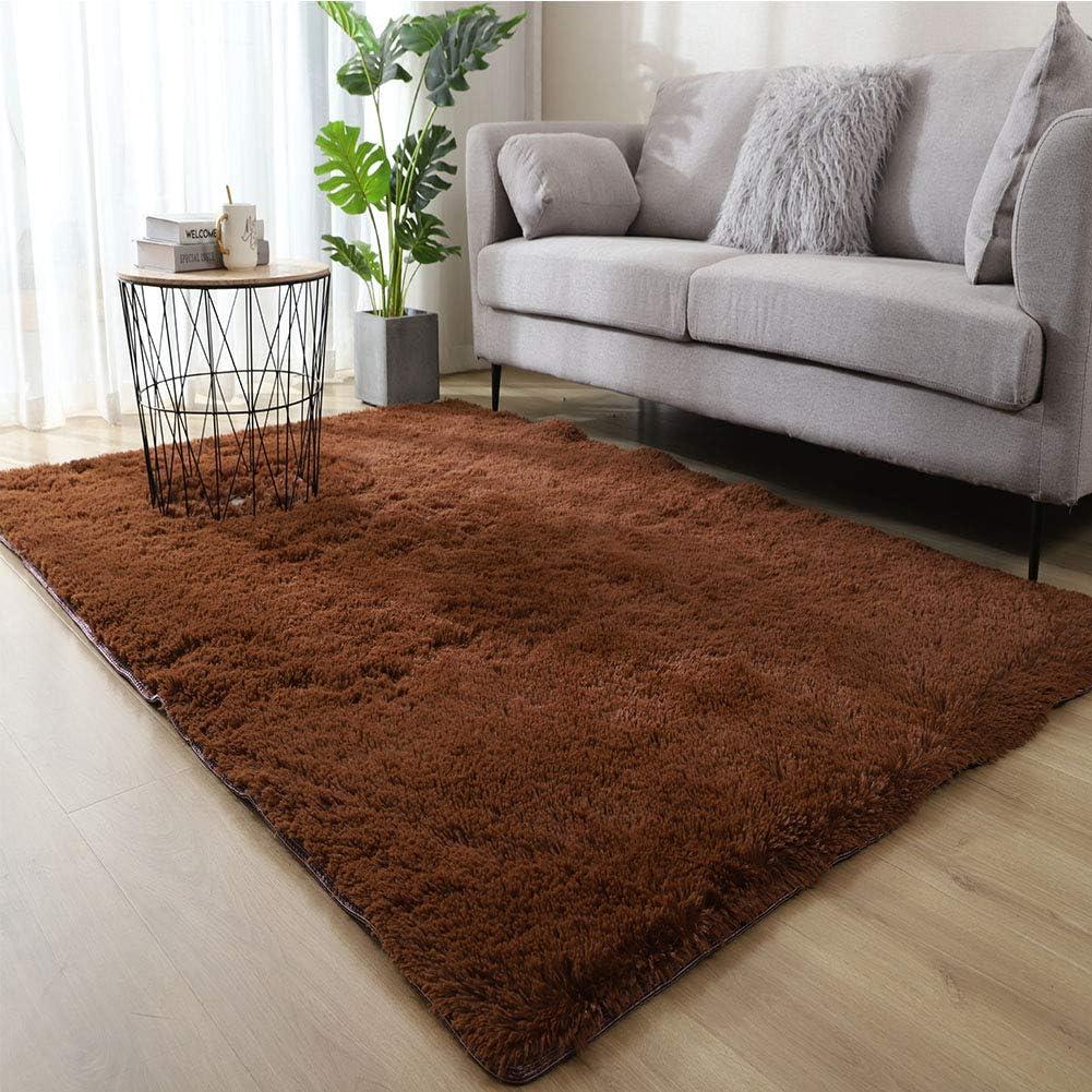 Moderne Langflor Teppich f/ür Wohnzimmer Schlafzimmer Schlafsaal Hochflor Flauschig Teppiche Waschbar Korridor Jyswx Shaggy Teppich Wohnzimmer Gr/ö/ße:40 x 60 cm Farbe: Grau