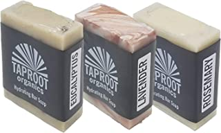 TAPROOT ORGANICS BODY SOAP BARS – Spa Blends Pack Includes Three Natural Face Soap for ENTIRE FAMILY Rosemary, Lavender & Eucalyptus Bar Antifungal, Antibacterial, Cold Process, Vegan (Pack of 3)
