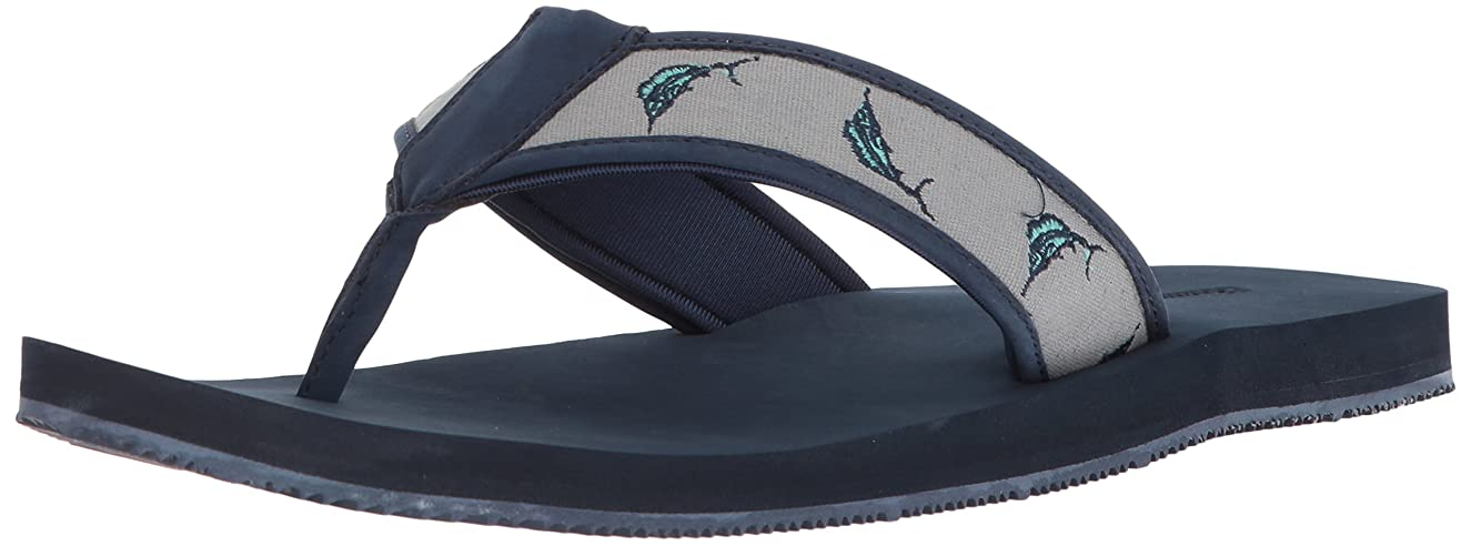 aa3adfdeb291 Havaianas Men's Hype Sandal nsjef684239 - tembredecarteret.com