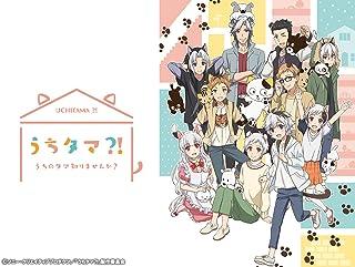 TVアニメ『うちタマ?! 〜うちのタマ知りませんか?〜』