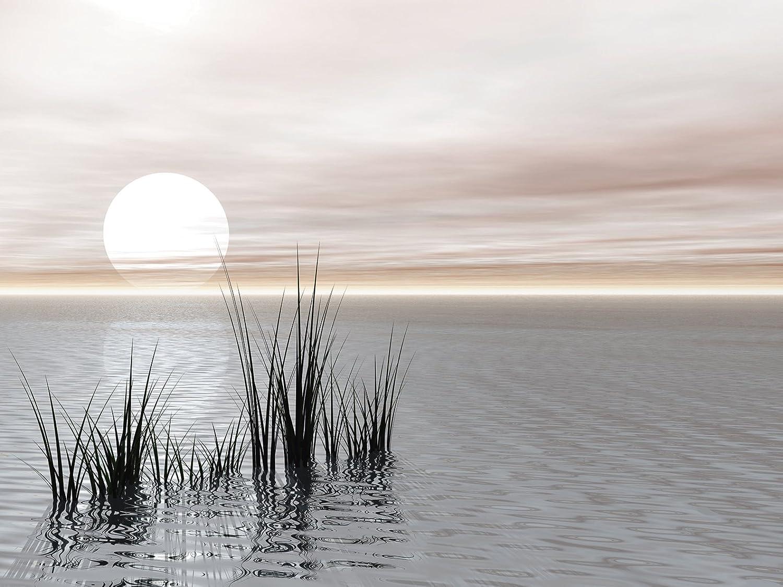 Artland Qualitätsbilder I Glasbilder Deko Glas Glas Glas Bilder 80 x 60 cm Landschaften Sonnenaufgang -untergang Digitale Kunst Bunt C6RL Sonnenuntergang B01E4VVA22 fb582a