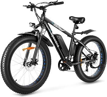 Speedrid Fat Tire Bike