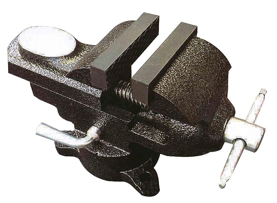 アマゾンジャングルカルシウム影響を受けやすいですTRAD 350126 50mm 小型精密バイス TSV-50