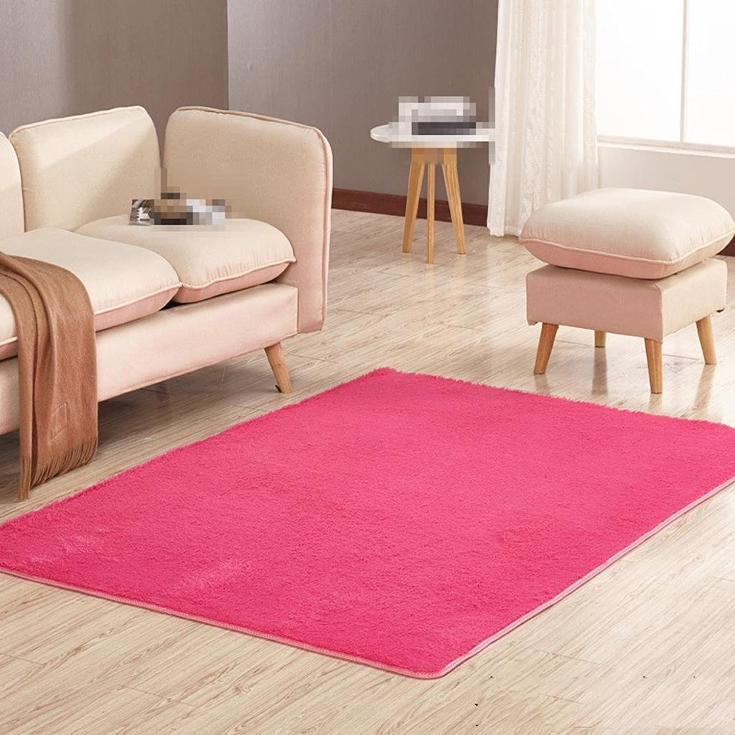 DYI Thick nonslip carpet, living room coffee table bedroom mats, mats, 60  160cm