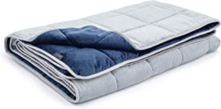 LUXOME Queen Size Weighted Blanket for Adults with Integrated Minky Cover | 18-20lbs | 60