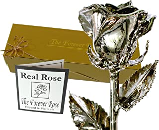 platinum dipped real rose