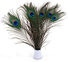 Bseash Real Natural Peacock Eye Feathers 10-12