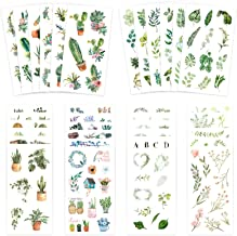 Best Knaid Watercolor Green Plant Stickers Set - Decorative Sticker for Scrapbooking, Kid DIY Arts Crafts, Album, Bullet Journaling, Junk Journal, Planners, Calendars and Notebook Reviews