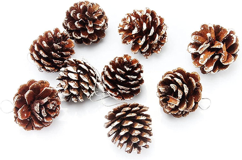 Tulsa Mall Christmas Pinecone Ornaments Natural Topics on TV Pine Cones Tr Big