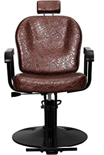 Beauty Style Salon Styling Chair Reclining Hydraulic Chair with Movable Headrest Brown New