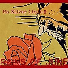 No Silver Lining