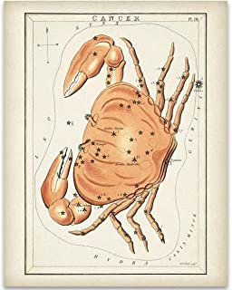Cancer Zodiac Crab Antique Constellation Art Print - 11x14 Unframed Art Print - Great Gift Under $15 for Astrology Enthusiasts