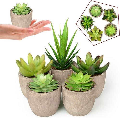 Mejor valorados en Plantas y flores artificiales & Opiniones ...