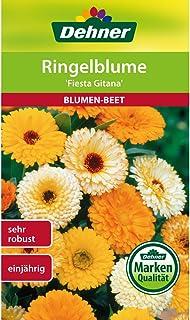 Dehner Blumen-Saatgut, Ringelblume Fiesta Gitana, 5er pack 5 x 3 g