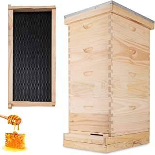 Happybuy Langstroth Bee Hive 4 Layer Langstroth Box 20 Frame Beehive Frames 2 Brood Box 2 Super Box Langstroth Beehive Kit