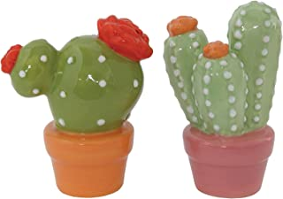 Best succulent salt and pepper shakers Reviews