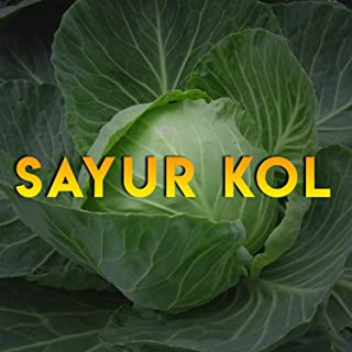 Sayur Kol