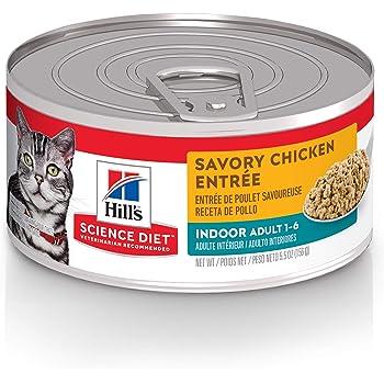 Amazon Com Hill S Prescription Diet A D Urgent Care Canned Dog And Cat Food 5 5 Oz 24 Pack Wet Food Pet Supplies