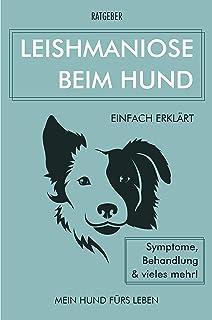 Leishmaniose bei Hunden: Leishmaniose beim Hund einfach erklärt - Symptome, Behandlung und vieles mehr!